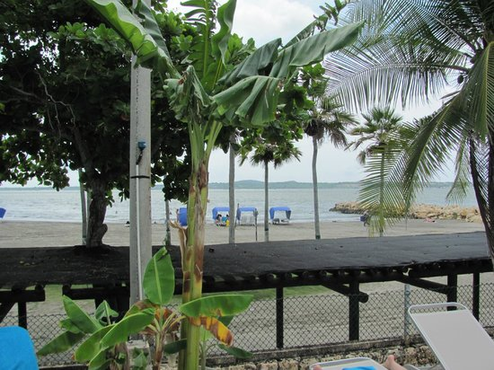 Hilton Cartagena: Beach