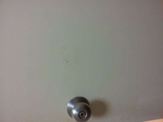 Chateau Resort & Conference Center: dirty hand smudge on bathroom door... can't they just wipe that?