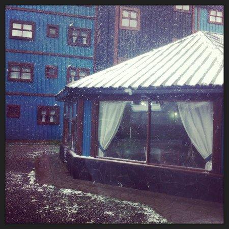 Apart Hotel Tierra del Fuego : Primavera en el fin del mundo !