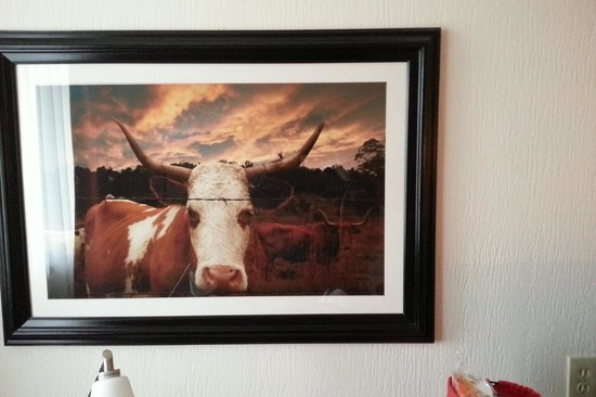 Wyndham Garden Austin : Odd cattle art in room