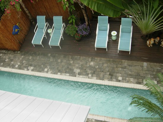 Pineapple Point Guest House and Resort: Lap pool