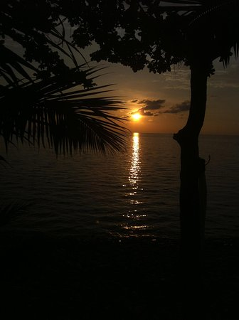 Paradise Palms Resort: sunset