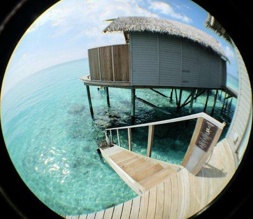 Centara Ras Fushi Resort & Spa Maldives : Stairways down to the water from sundeck