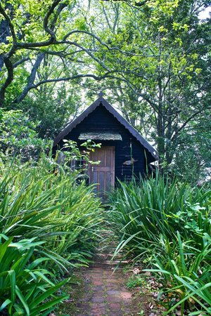 Wild Spirit Lodge and Backpackers: Bee Keepers Cottage
