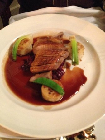 BEST WESTERN Buxton Lee Wood Hotel: Duck