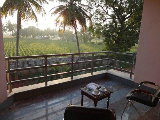 Krishna Heritage: Blick vom Balkon auf die Felder