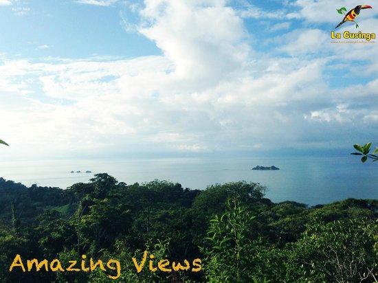 La Cusinga Eco Lodge: WOW the view