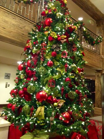 Hotel Corque: Christmas tree in lobby.