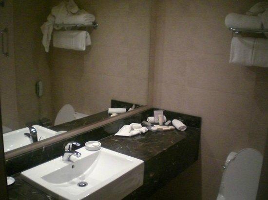 Crowne Plaza Hotel Santiago : ванная