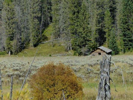 Earthquake Lake: Cabin Creek - cabins were abandoned during the earthquake