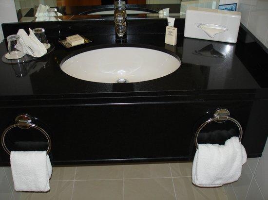Hilton Dublin Airport Hotel: Bathroom