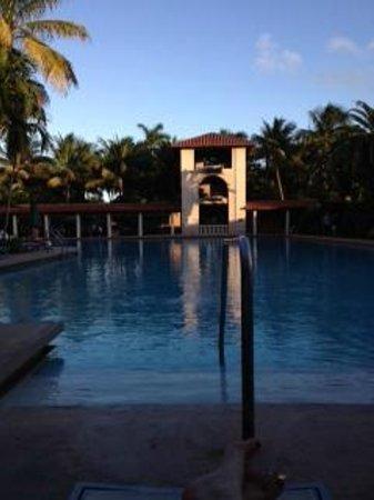 The Biltmore Hotel Miami Coral Gables : Pool