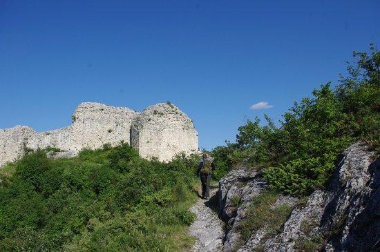 Serramonacesca, อิตาลี: Castel Menardo