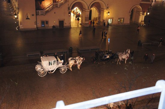 The Bonerowski Palace : Horse and carriage outside the hotel - must do trip