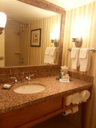 Hilton Daytona Beach / Ocean Walk Village: Nice bathroom