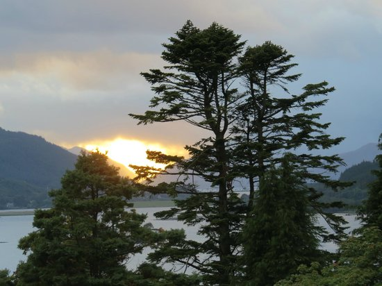 Glencoe House: Twin Trees at Sunset...view from our room.
