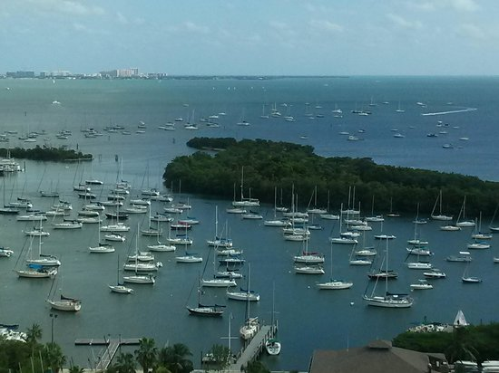 Sonesta Coconut Grove Miami : View from our room