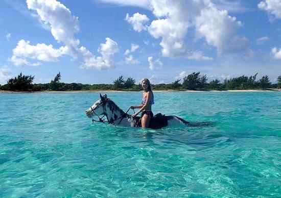 Coral Stone Stables: Swim Ride