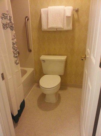 Residence Inn Nashville Airport: Bathroom