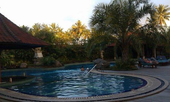 Bhuwana Ubud Hotel: Swimming Pool with minibar