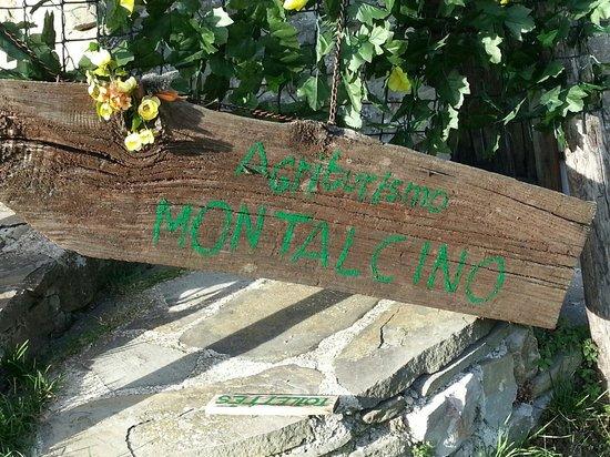 Agriturismo Montalcino: Il benvenuto
