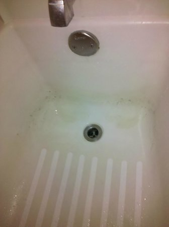 Super 8 Albuquerque East : Stained pitted tub