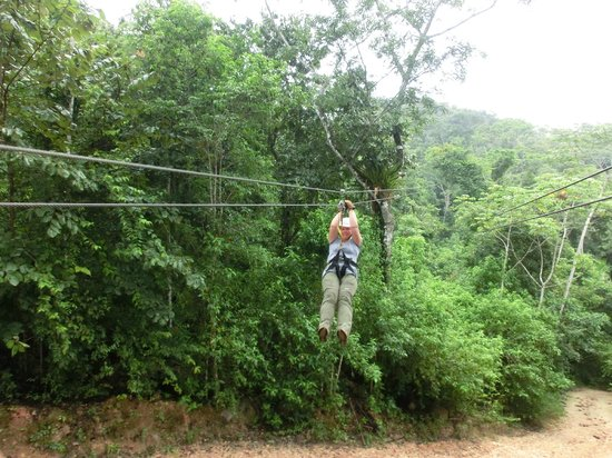 Calico Jack's Belize Jungle Canopy and Zip Lining: zipline