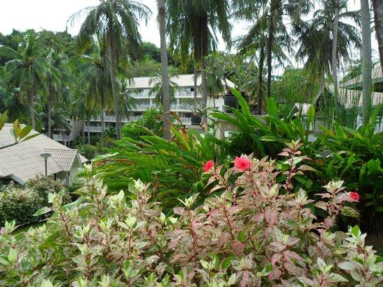 Cape Panwa Hotel: Сад
