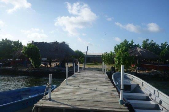 Cabañas Ukuptupu: Muelle