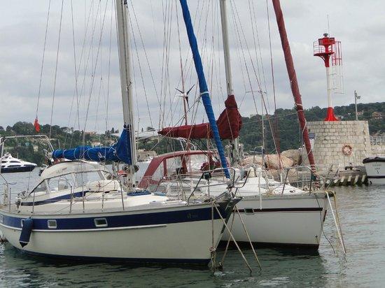 La Darse : marinas del puerto