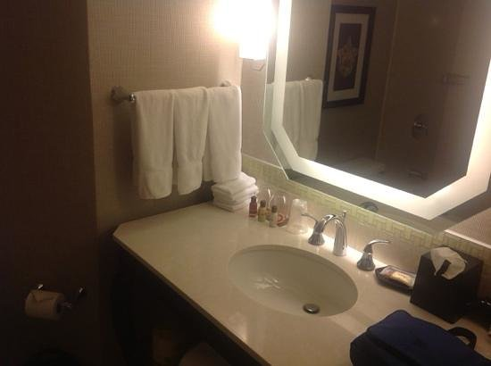 Sheraton New Orleans Hotel : Bathroom vanity