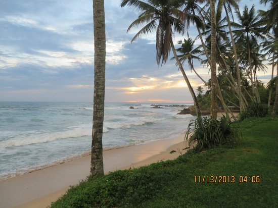 The Frangipani Tree by Edwards Collection: sunset from hotel