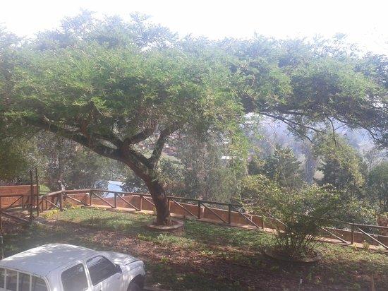 Discover Rwanda Youth Hostel: ön bahçeden manzara