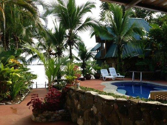 Cabinas Jimenez: pool and view