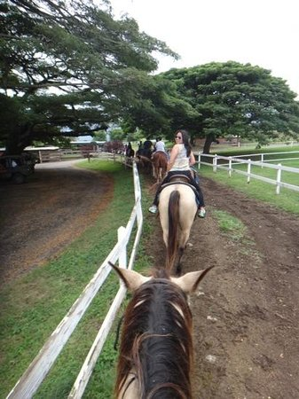 Kualoa: horseback ride