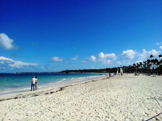Secrets Royal Beach Punta Cana: Beach
