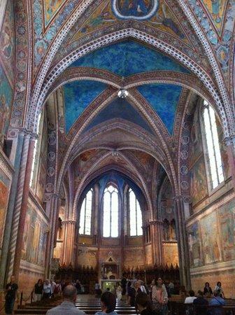 Basilica inferiore di San Francesco d'Assisi : Assisi, Basilica di San Francesco, interno