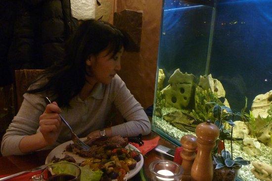 Lidojosa Varde The Flying Frog: столик возле аквариума