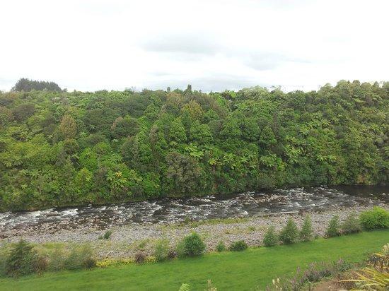 One Burgess Hill: River and bush views