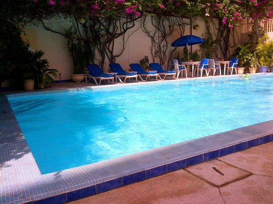 Hotel Faidherbe: The pool