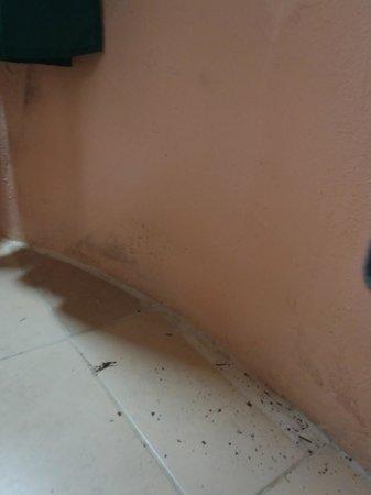 Rancho Tranquilo: Sol de la chambre sale
