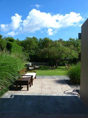 Posada El Capullo : Jardín