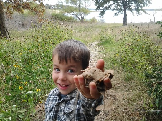 Lake Somerville State Park - Birch Creek Unit : fun times for a 4year old
