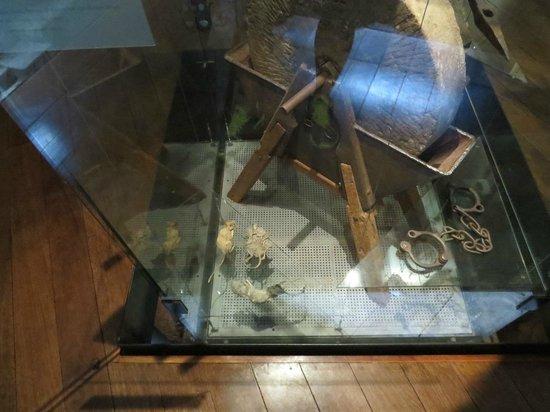 Hyde Park Barracks Museum: Findings at the museum