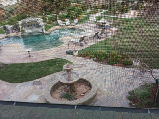 The Purple Orchid Wine Country & Spa: View from upstairs room (phone camera focused on screen)