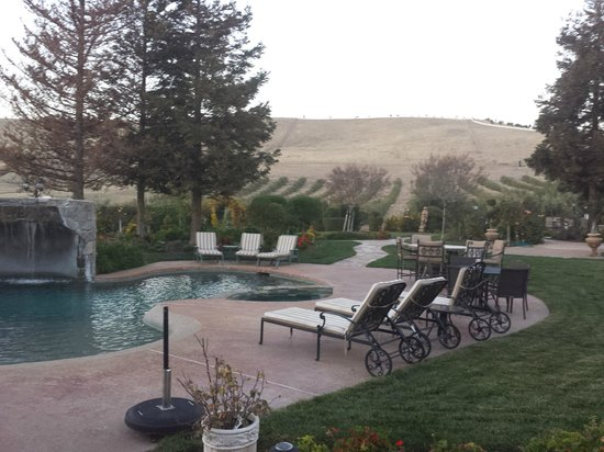 The Purple Orchid Wine Country & Spa : Pool area, hill side, olive orchard