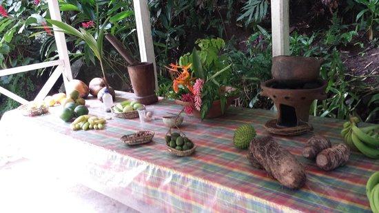 Diamond Botanical Gardens: Fruit display