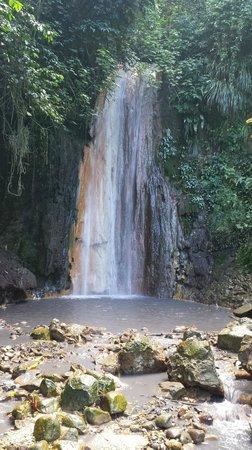 Diamond Botanical Gardens: Diamond Waterfall