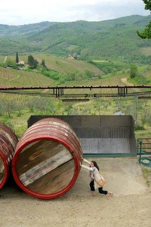 Terre di Melazzano: View from the wine tasting room