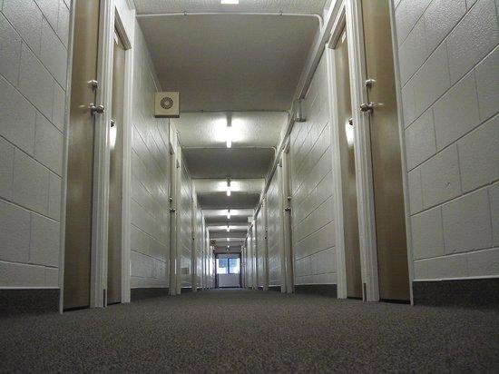 YMCA Hostel: x